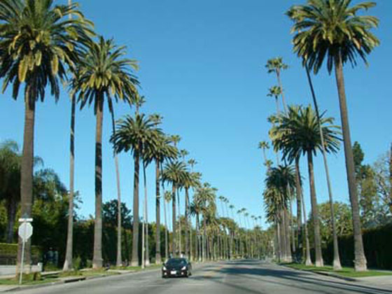 Beverly Hills, California is … | What is this ?